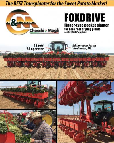 FoxDrive-12 Row Hydraulic