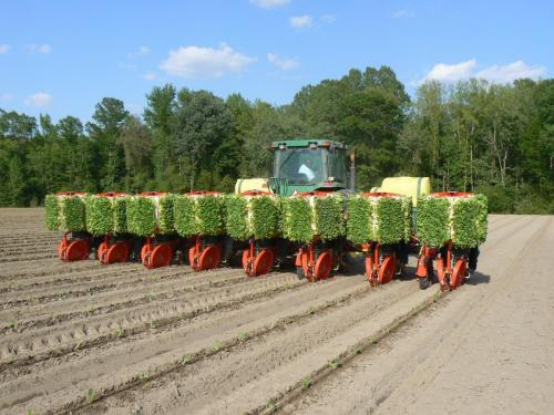 Trium-8-row planting tobacco in North Carolina